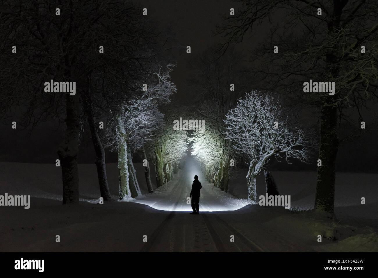 Droits Suède Nuit L'brillant Avec Lampe Les En PocheLa De uTlJ5FK13c