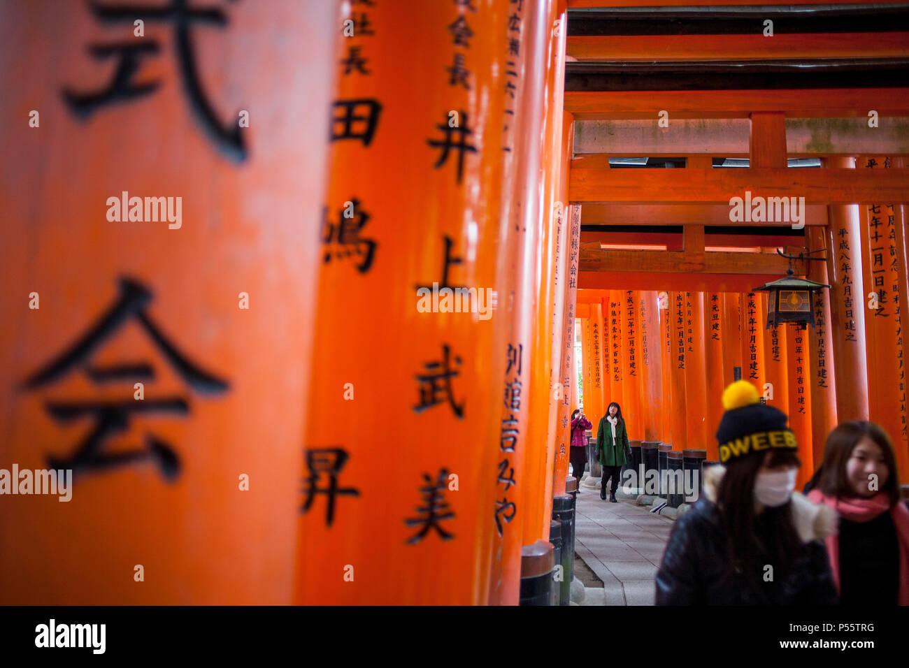 Portes Torii de Fushimi Inari-Taisha,sanctuaire à Kyoto, Japon Banque D'Images