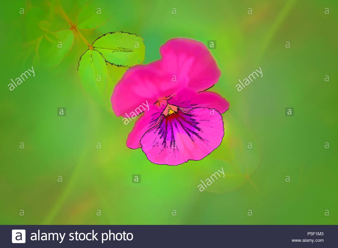 Petite Fleur Rose Sur Fond Vert Dessin Anime Par Ordinateur Banque