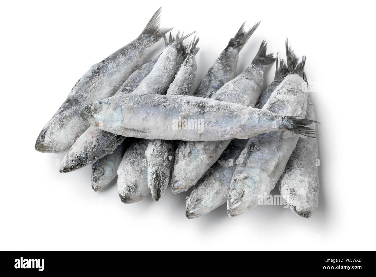 Tas de sardines crues congelées fraîches isolées sur fond blanc Photo Stock