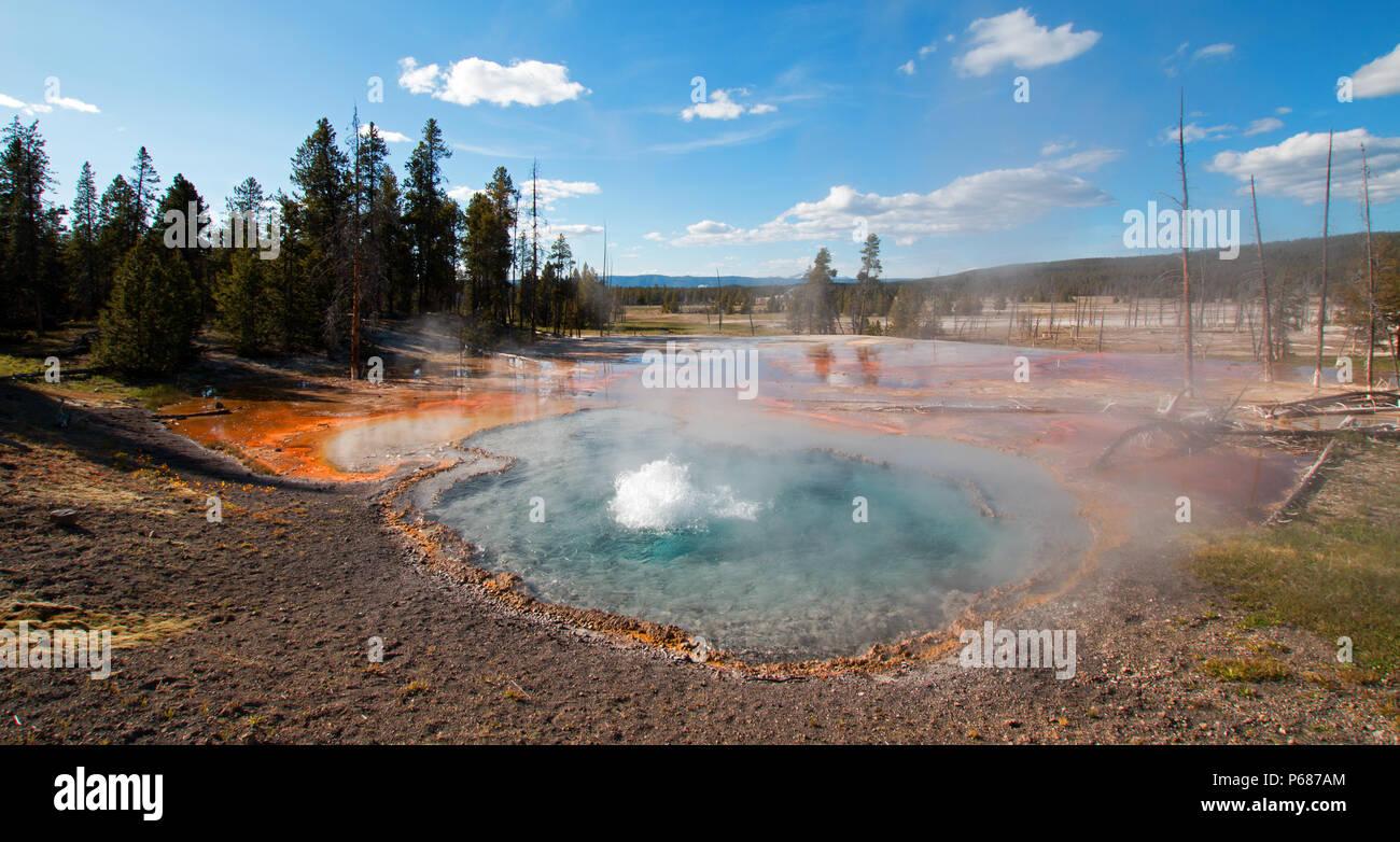 Le printemps Firehole Firehole Lake Drive dans le Parc National de Yellowstone dans le Wyoming United States Banque D'Images