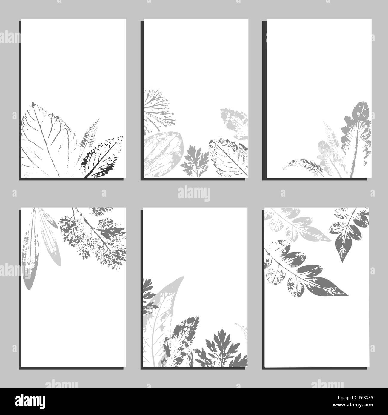 Collection Dtiquette Modle Vectoriel Cartes De Visite Voeux Et Des Carrs Bannires Avec Home Les Plantes Fleurs Sauvages