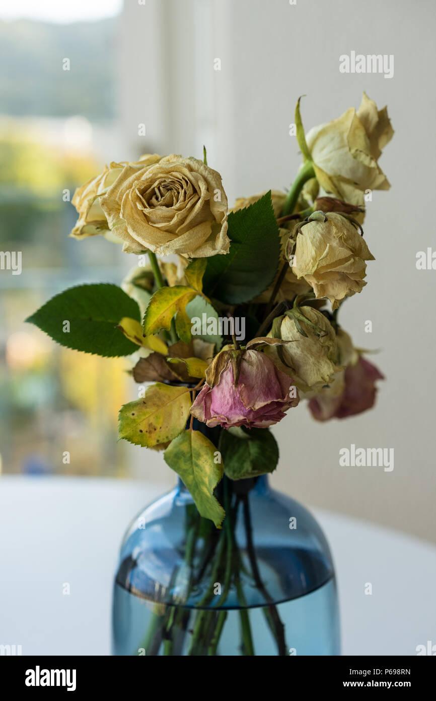 Bouquet de roses fanées en vase en verre jaune et rose Banque D'Images