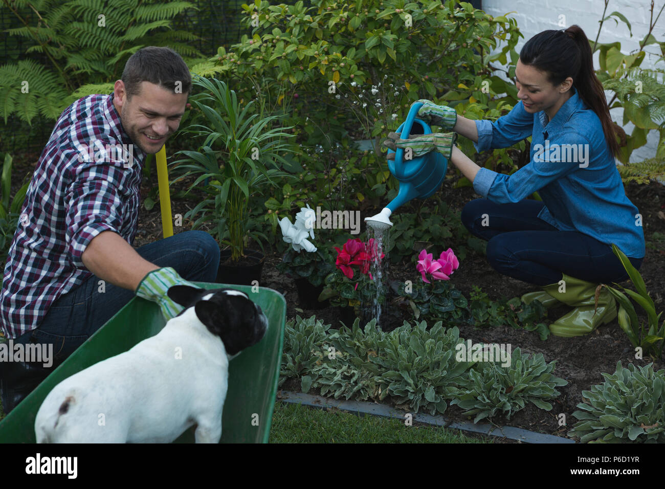 La plantation d'un couple dans le jardin des plantes Banque D'Images