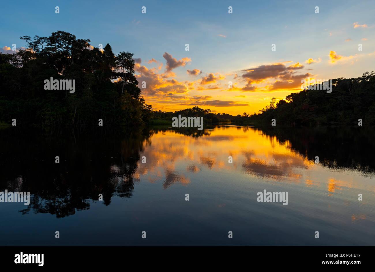 Coucher du soleil avec vue sur la silhouette de la forêt amazonienne à l'intérieur du parc national Yasuni, en Equateur. Photo Stock