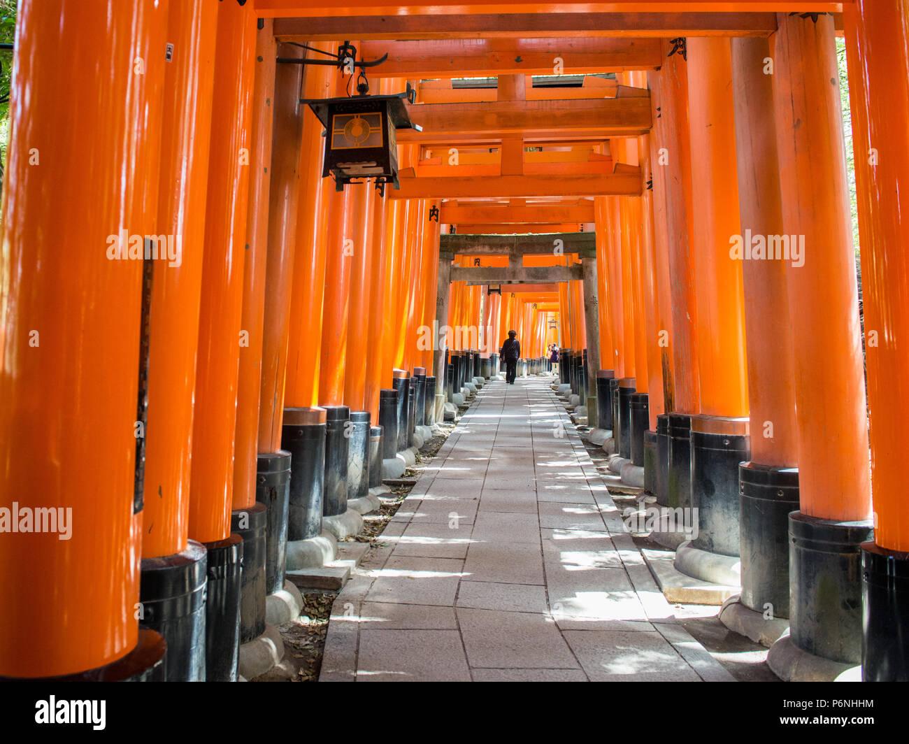 Les touristes japonais explorer Fushimi Inari Taisha à Kyoto, au Japon. Le long du chemin principal il y a plus de 10000 torii gates. Photo Stock