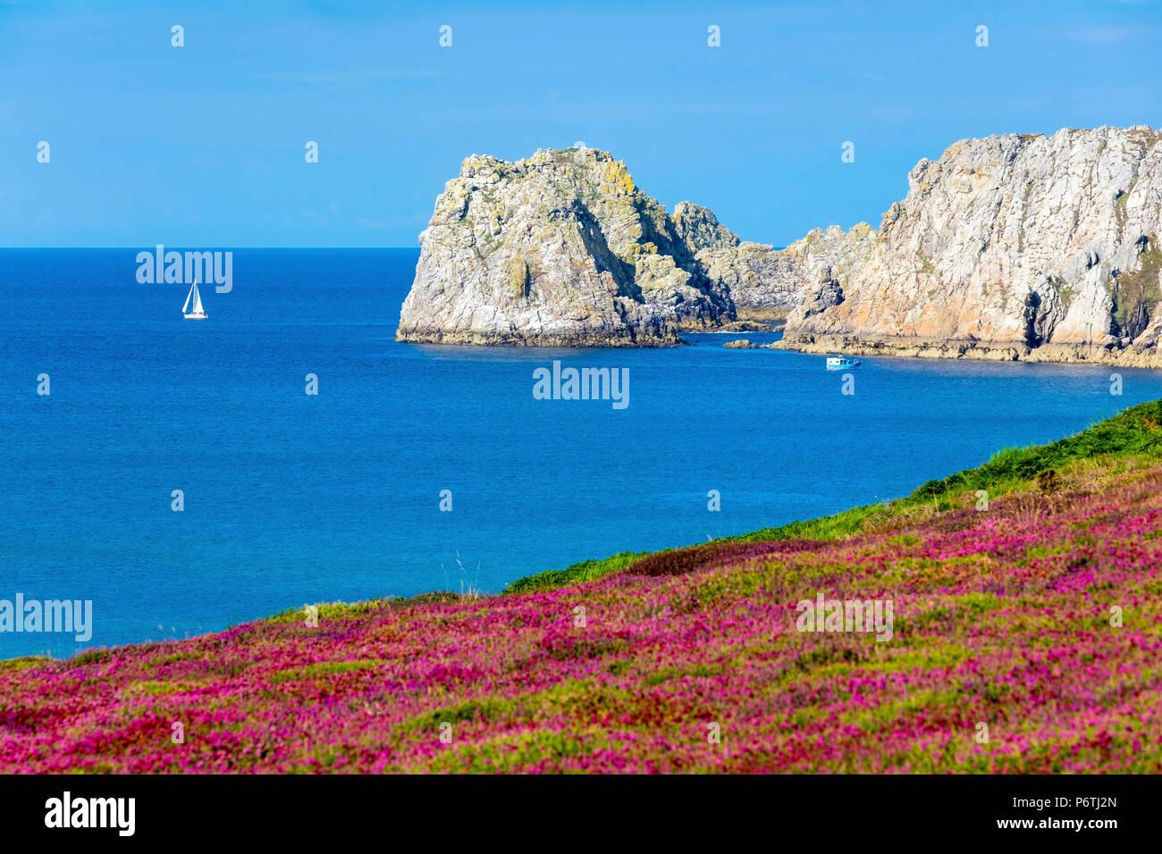 France, Bretagne, Finistère (Bretagne) département, Camaret-sur-Mer. Pointe du Pen-Hir sur la Presqu'ile de Crozon, Parc naturel régional d'Armorique. Photo Stock