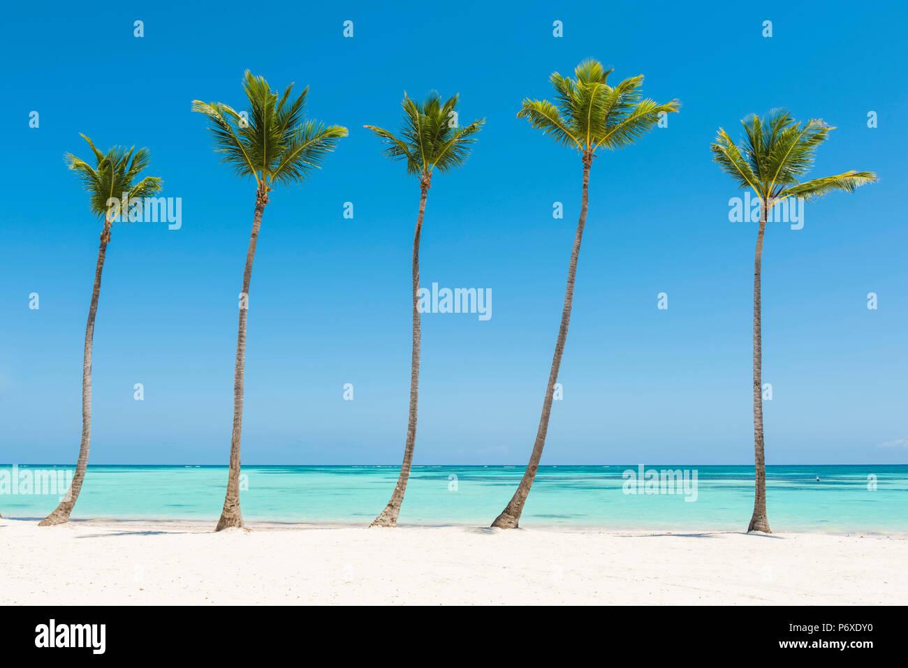 Juanillo Beach (playa Juanillo), Punta Cana, République dominicaine. La plage bordée de palmiers. Photo Stock