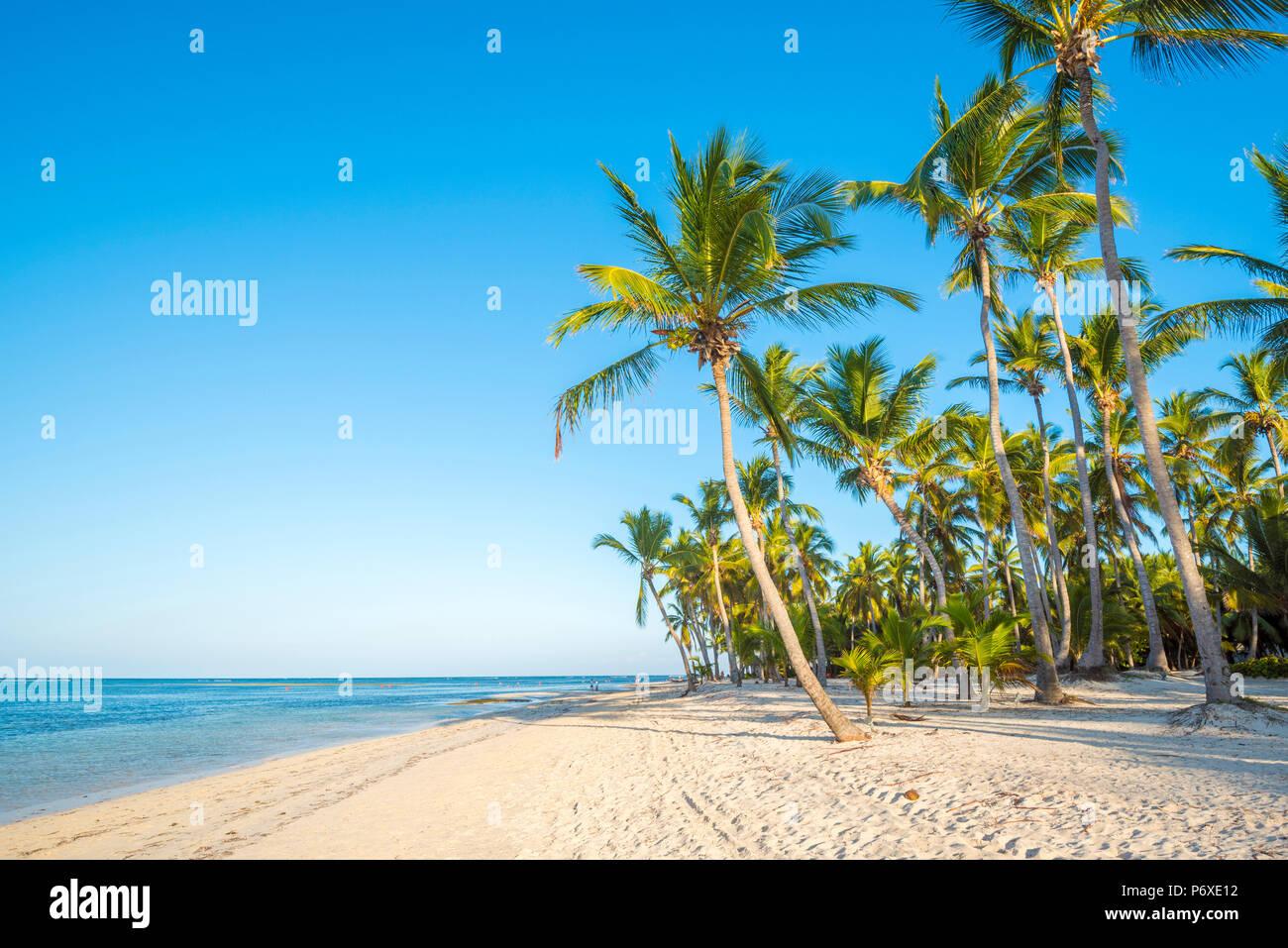 La plage de Cabeza de Toro, Punta Cana, République dominicaine. Banque D'Images