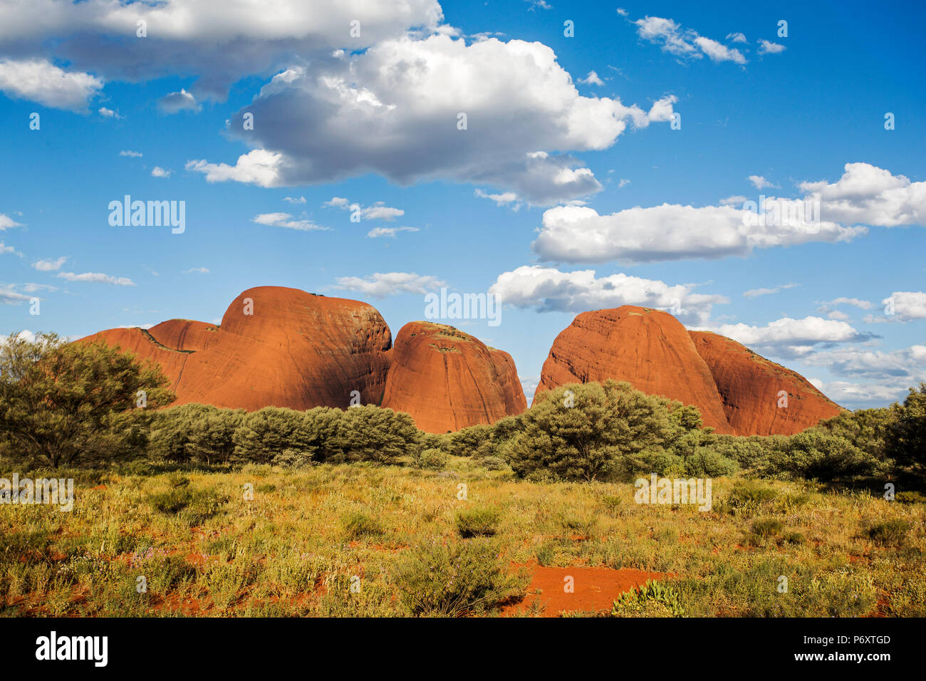 Kata Tjuta Centre Rouge. Territoire du Nord, Australie Photo Stock
