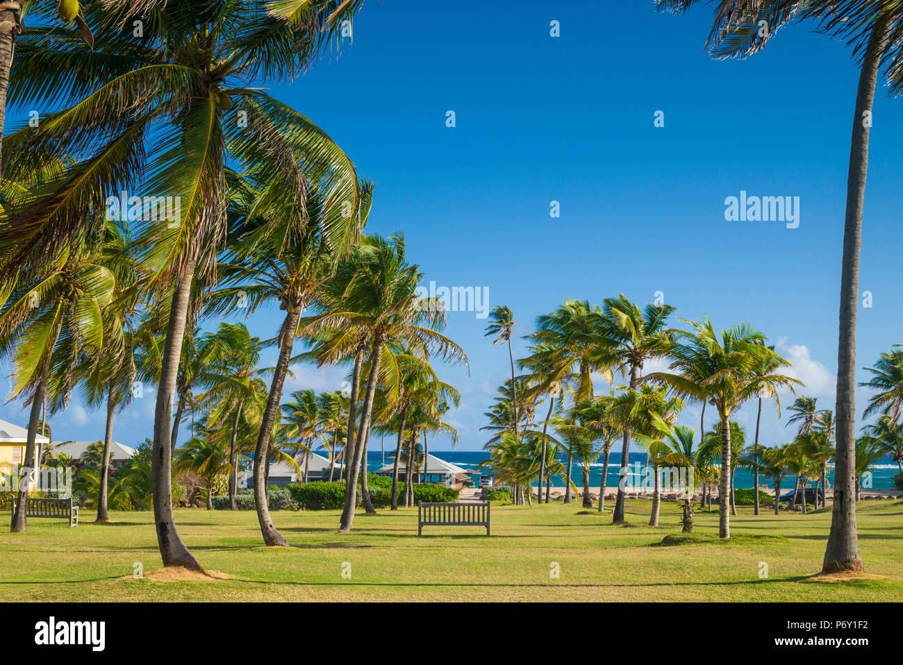Saint Kitts et Nevis, Nevis, Nisbet Plage, Nisbet Plantation Inn, ancienne plantation de canne à sucre Photo Stock