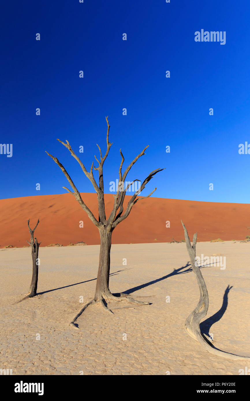 La Namibie, le Parc National Namib Naukluft, Sossussvlei Sand Dunes Photo Stock