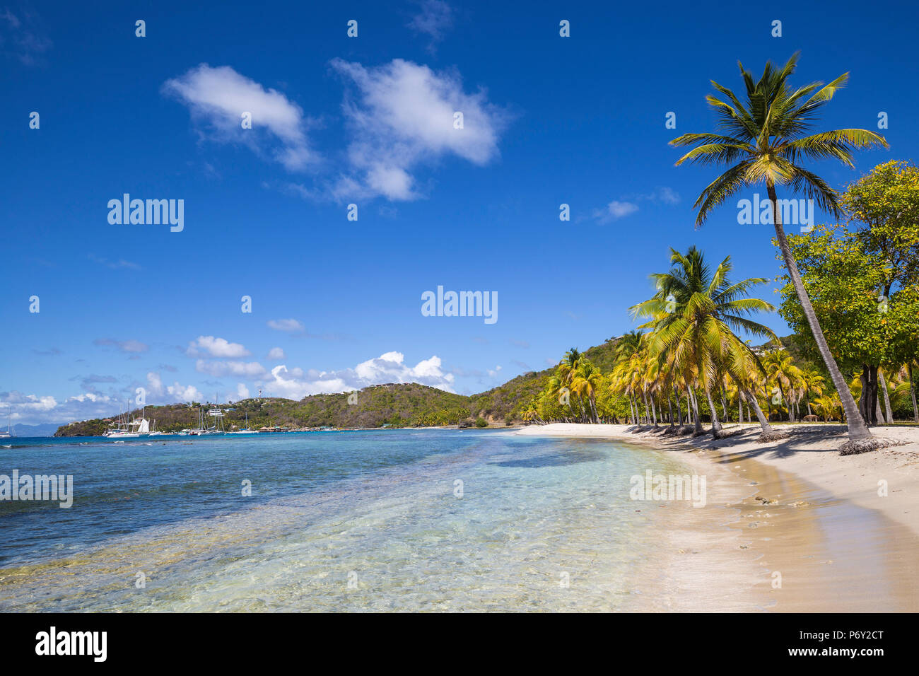 St Vincent et les Grenadines, Mustique, Brittania Bay Beach Photo Stock