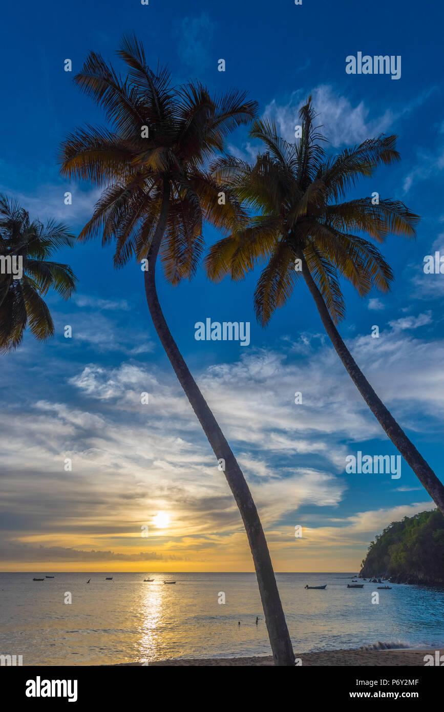 Caraïbes, Trinité-et-Tobago, Tobago, Castara Bay, Castara Photo Stock