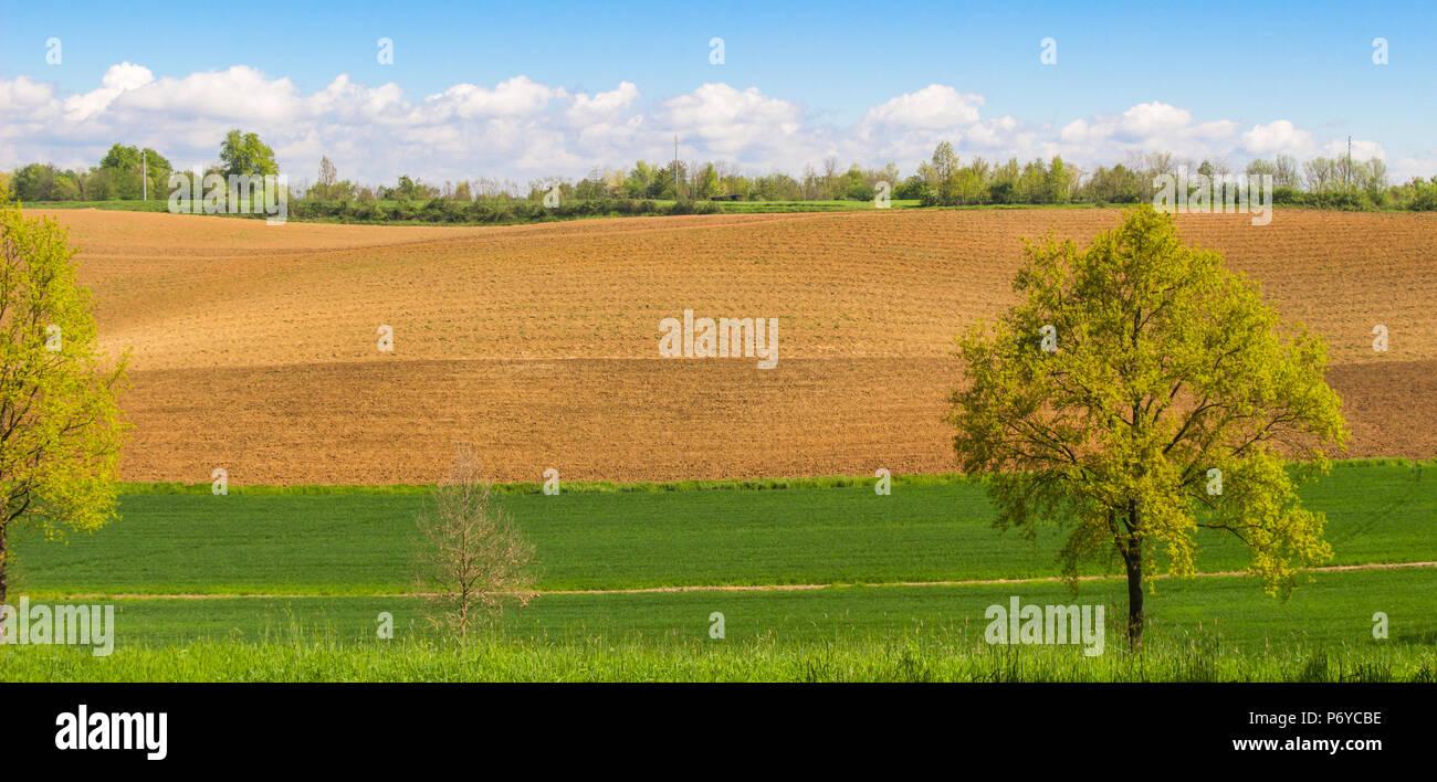Tracteur laboure un champ du paysage dans la saison du printemps / Paysage de champ labouré sous la lumière du soleil du soir / fond paysage Photo Stock