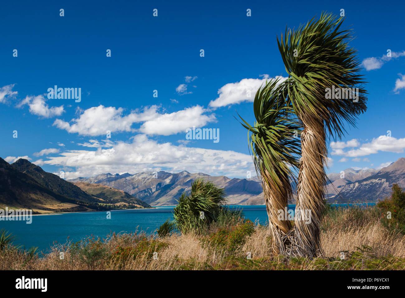 Nouvelle Zélande, île du Sud, de la région de l'Otago, Wanaka, lac Hawea Photo Stock