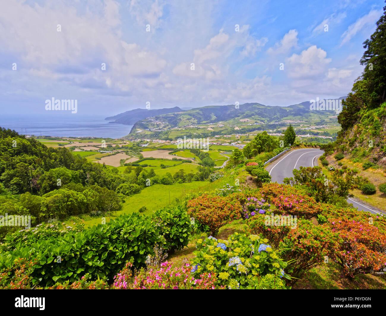 Le Portugal, Azores, Sao Miguel, Nordeste, vue de la côte Est avec Hortensias au premier plan. Photo Stock