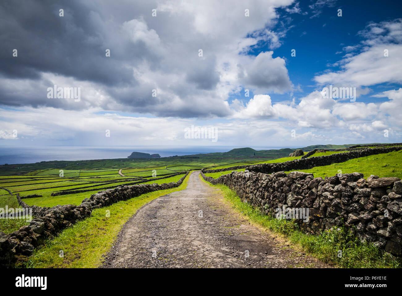 Le Portugal, Açores, l'île de Terceira, Serra do cume, mur de pierre Photo Stock
