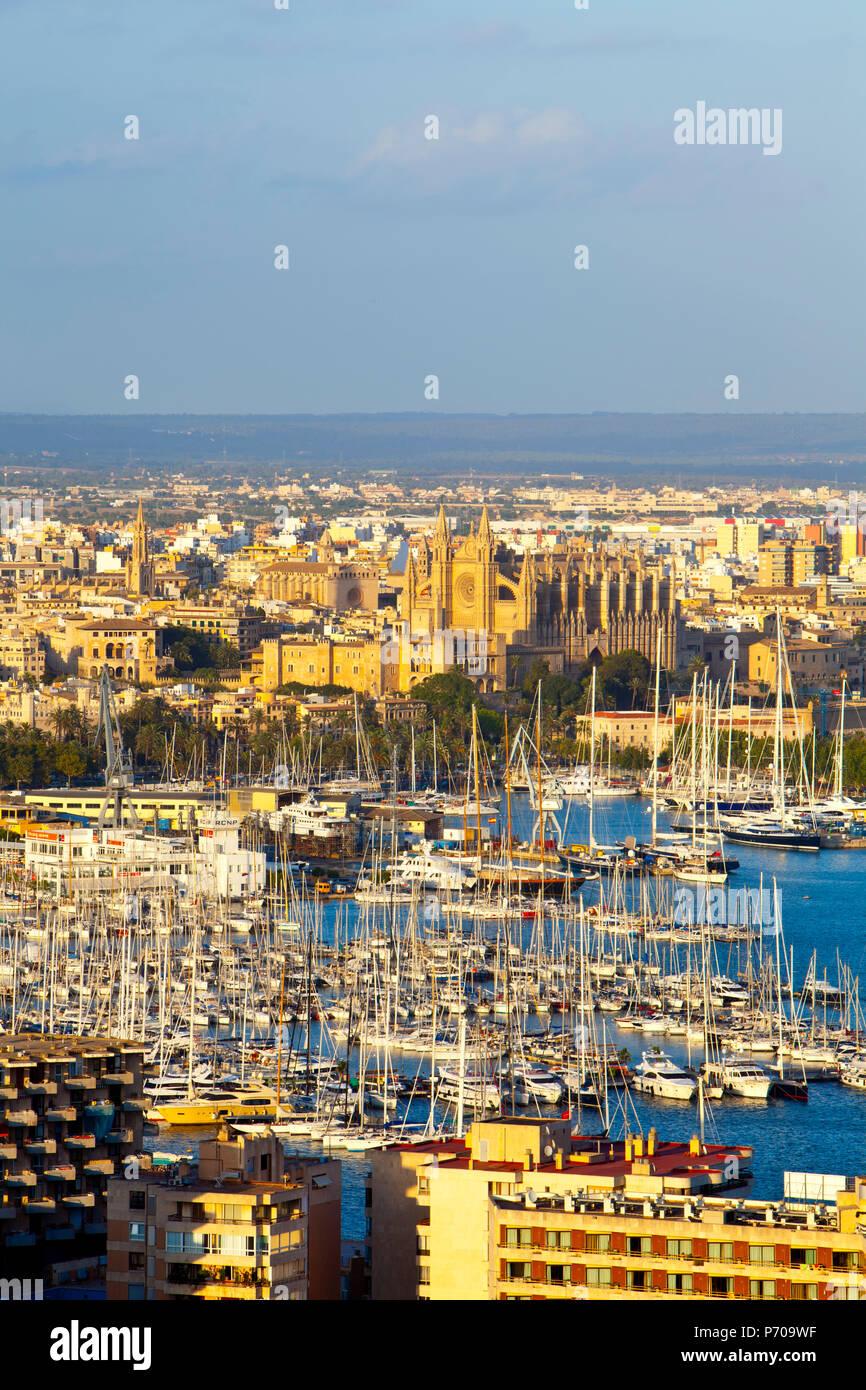 Palma de Mallorca, Majorque, Îles Baléares, Espagne Photo Stock