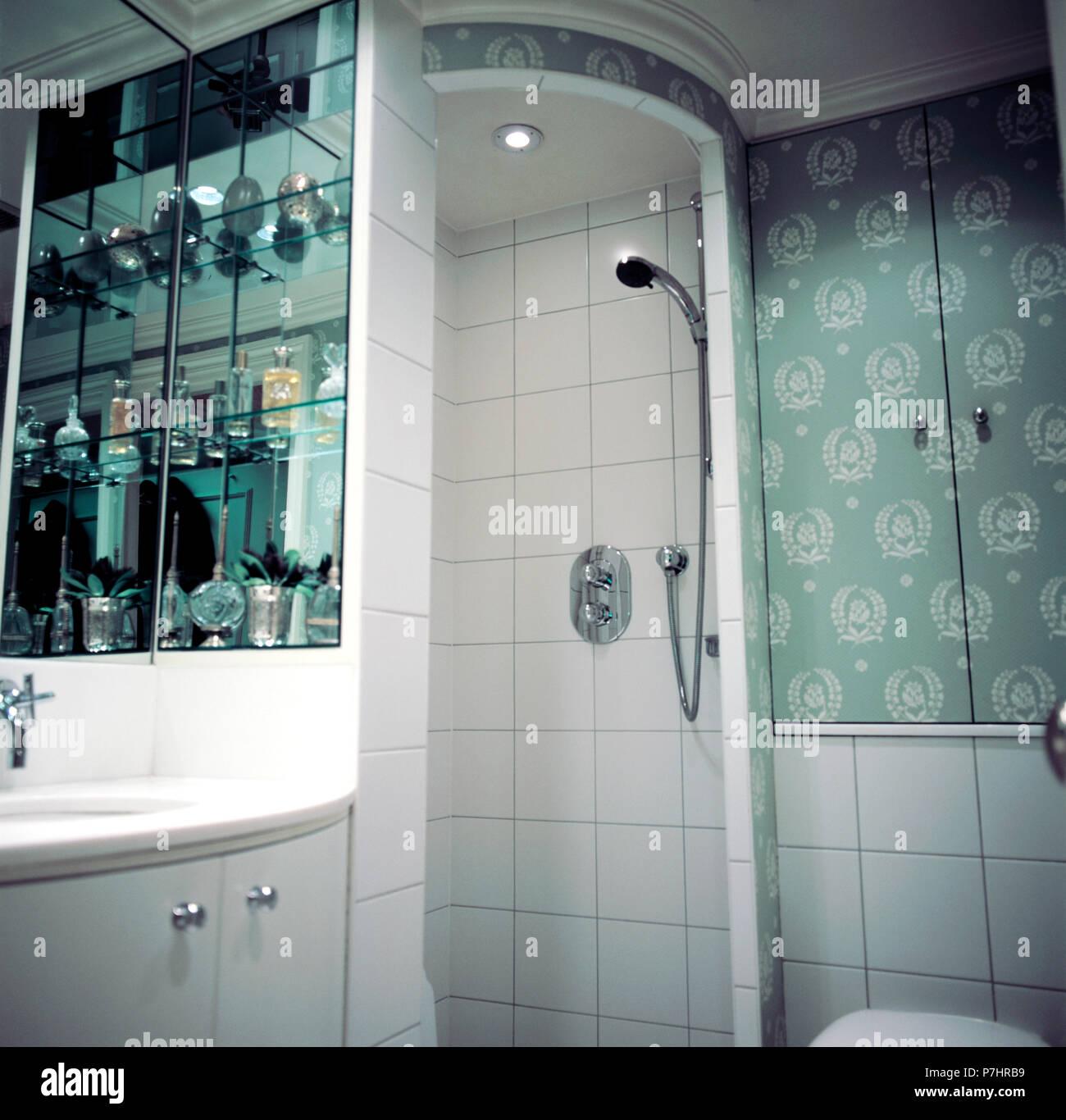 Sol carrelé douche en coin unité dans une petite salle de bains vert ...