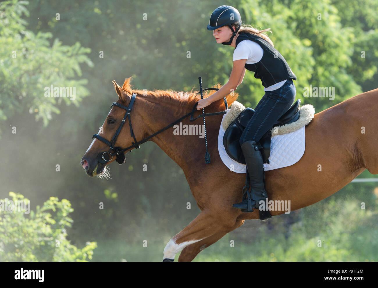 Young Girl riding a horse Photo Stock
