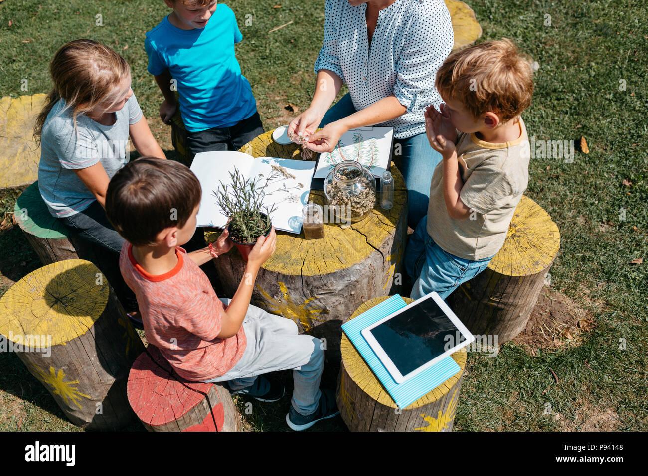 Les jeunes élèves du primaire à la découverte des herbes à travers leurs sens dans un jardin. Vue de dessus de l'école des enfants assis autour d'une table et d'apprentissage sur les plantes. Photo Stock