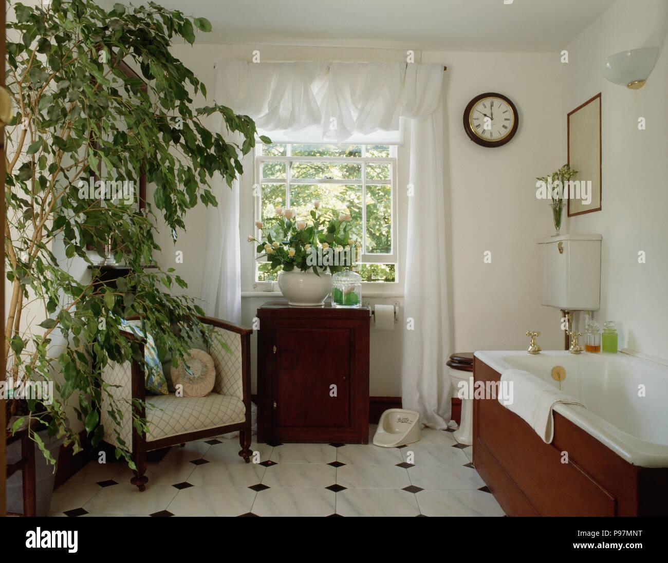 Grande plante vert et blanc rideau drapé de blanc salle de ...