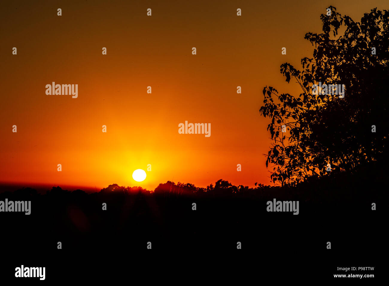 Lever du soleil sur le Zambèze, John's Camp, Mana Pools, Zimbabwe Photo Stock