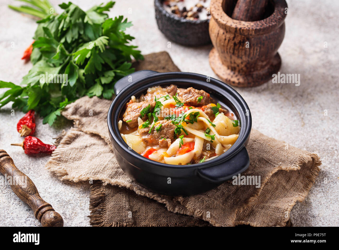 Oriental traditionnel soupe lagman ouzbeks Photo Stock