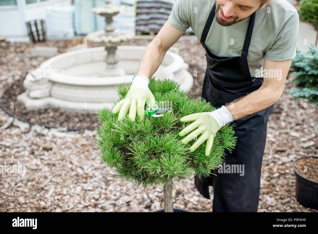 Travailler au jardin jardinier Photo Stock