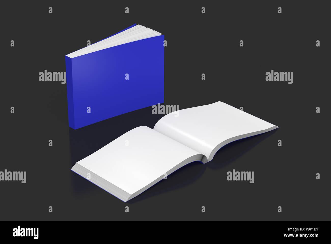 Horizontales Bleu Blanc Livres A Couverture Souple Et Ouvert