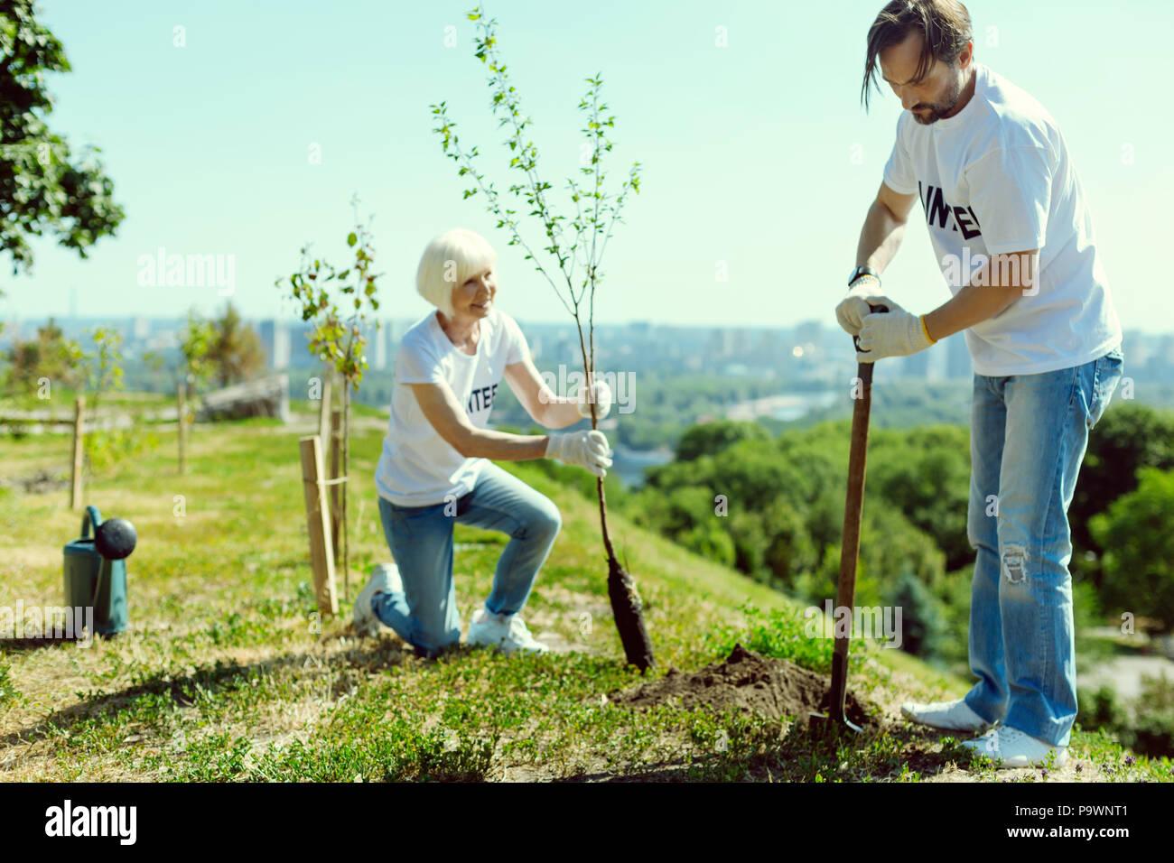 L'homme attentif de la préparation du sol pour la plantation Banque D'Images
