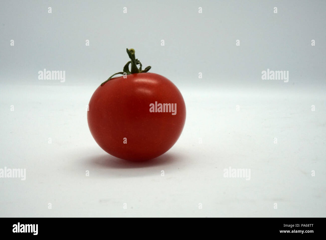 Rote einsame tomate Photo Stock