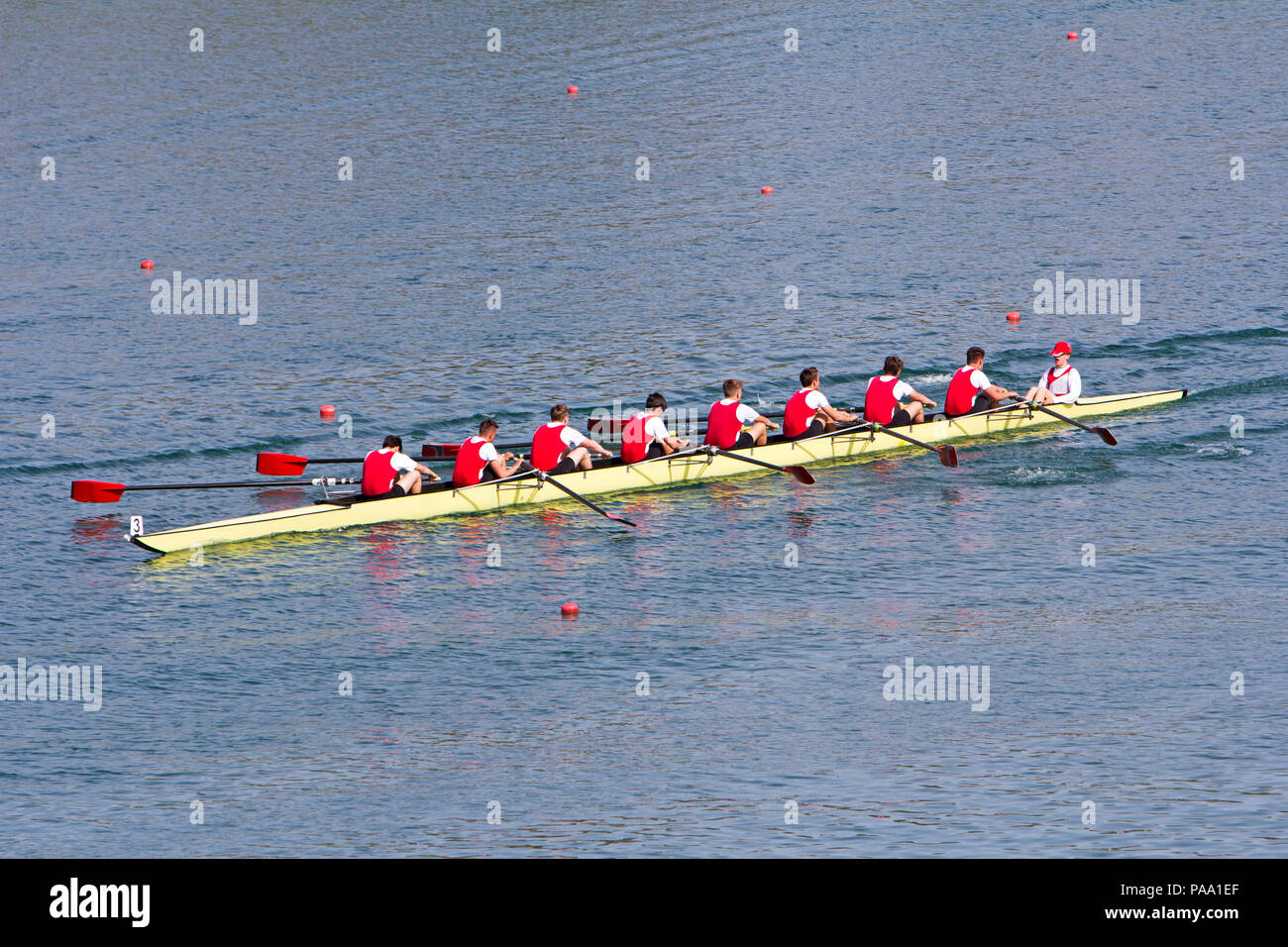 Huit rameurs aviron barques sur le lac tranquille Photo Stock
