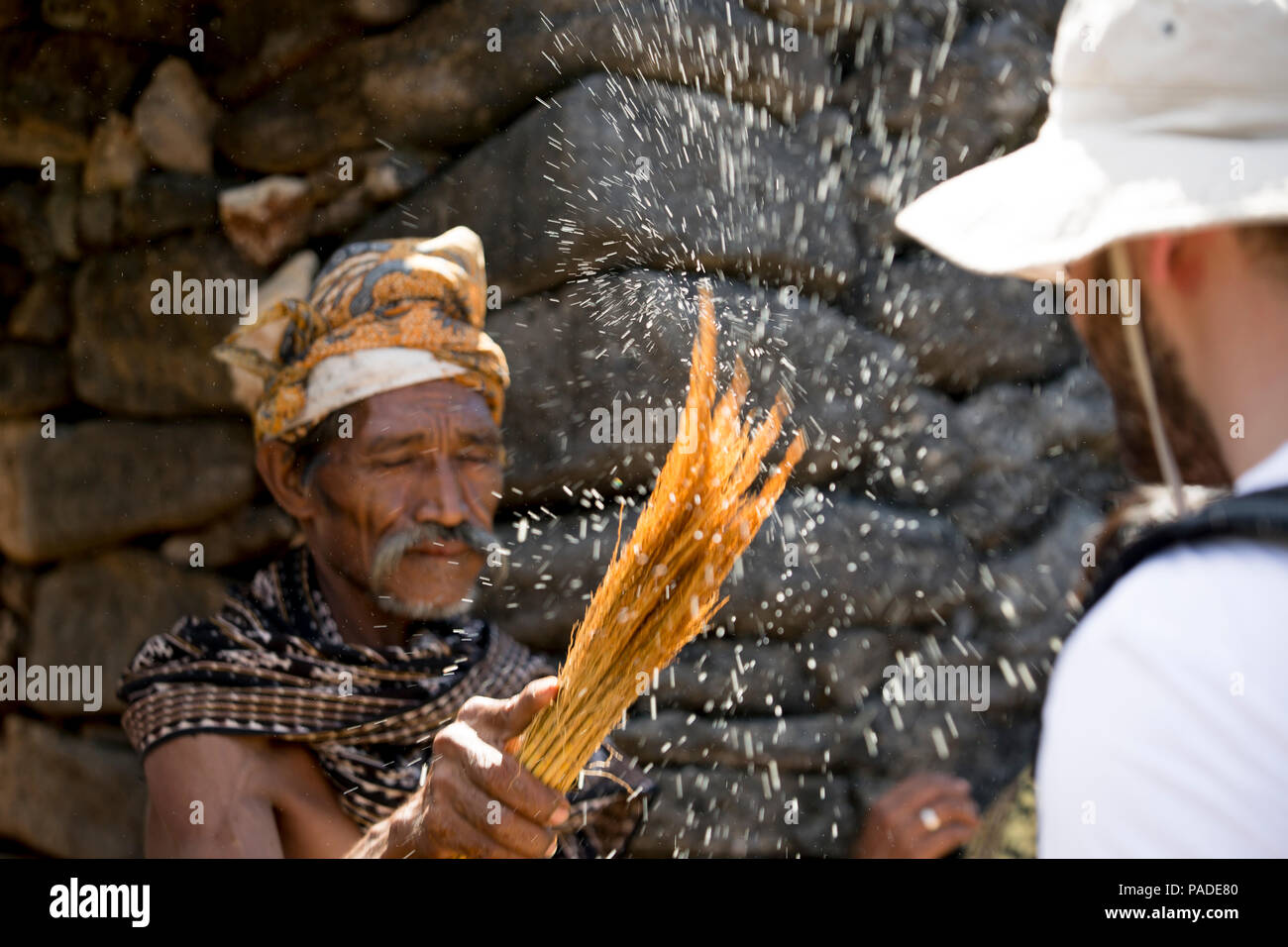 Rituel de purification accueillant, Seba Savu, Indonésie Photo Stock