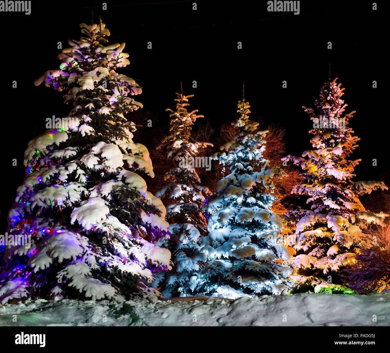 Beau Noël firtree resplendissante avec guirlande multicolore onn- nuit étoilée background Photo Stock