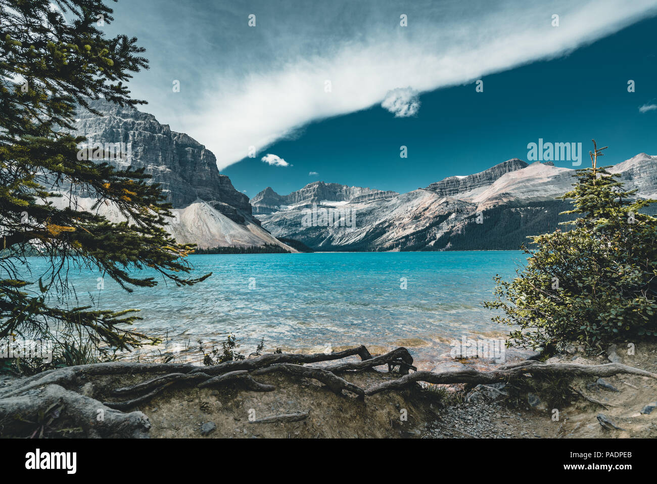 Vue sur le lac Bow, parc national Banff Canada Photo Stock