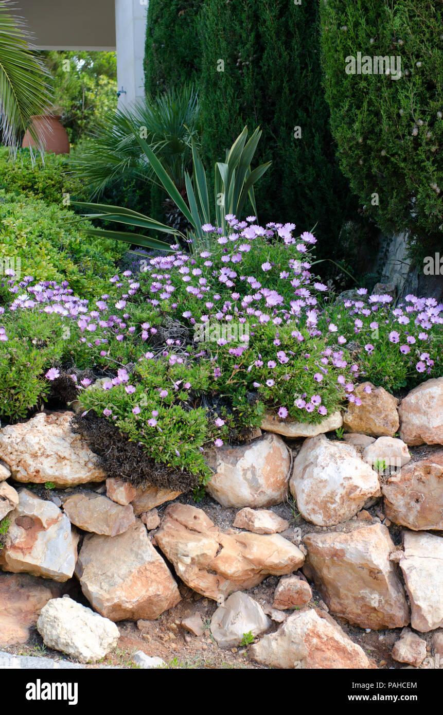 Jardin de rocaille dans le jardin méditerranéen Banque D\'Images ...