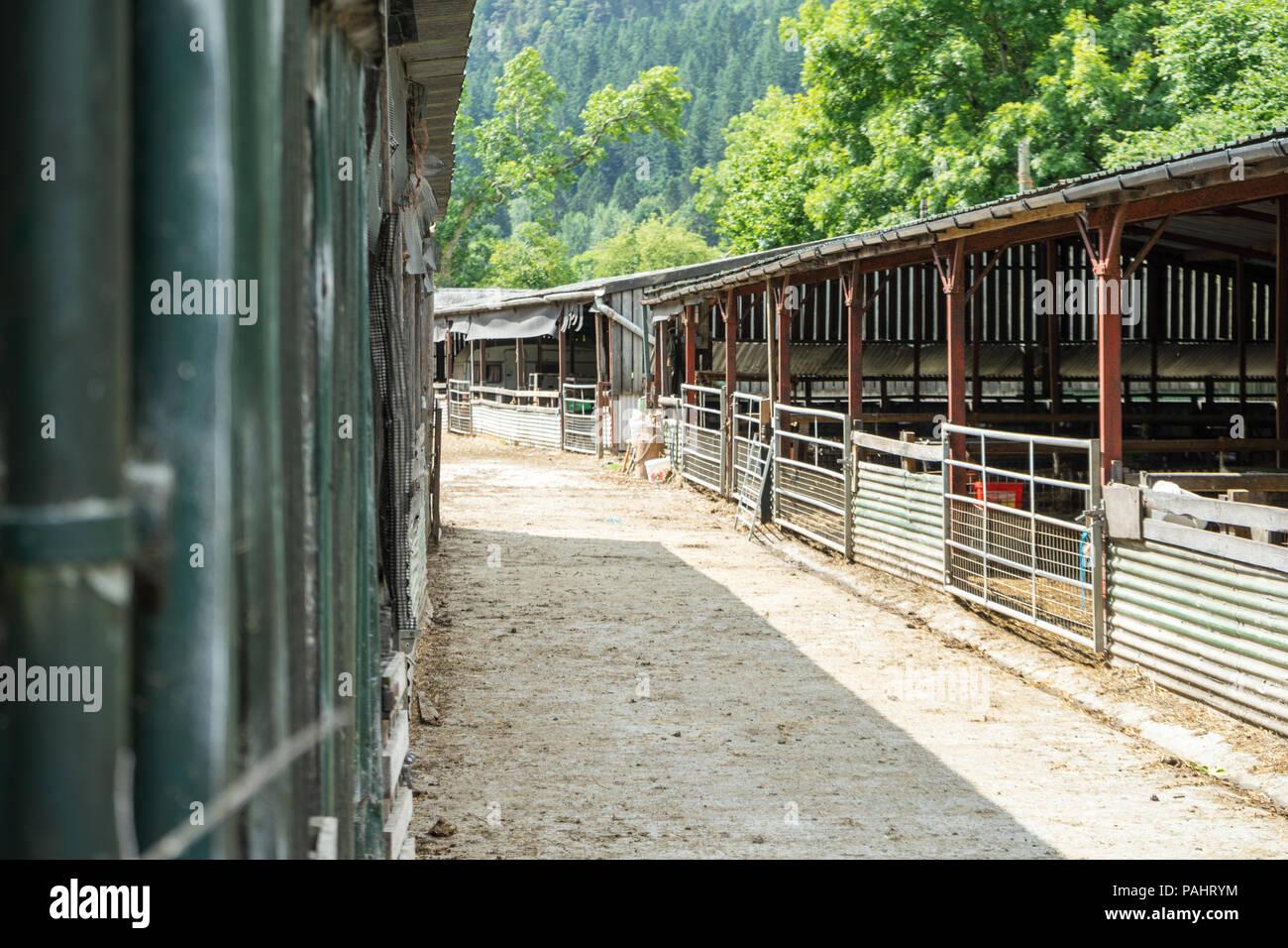 Farm Yard shot avec open bovins / ovins cabanes / stables, avec des clôtures et le chemin Banque D'Images
