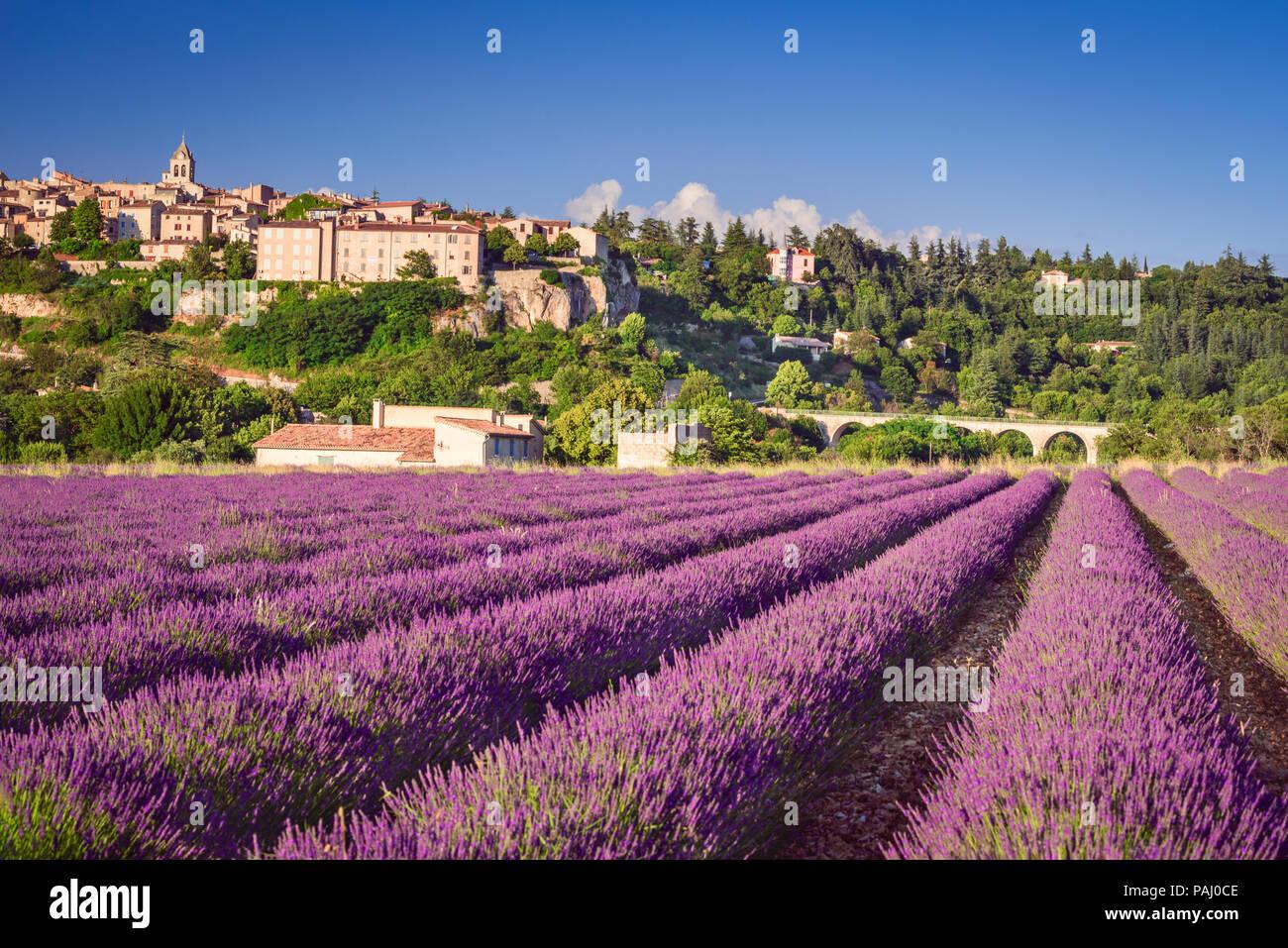 Sault, village perché en Provence avec champs de lavande, Vaucluse en France. Banque D'Images