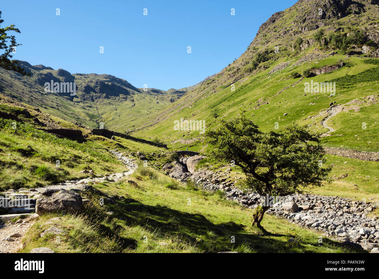 La voie à Pont de Stockley Seathwaite dans les montagnes du Parc National de Lake District, Borrowdale, Cumbria, England, UK, Grande-Bretagne Photo Stock