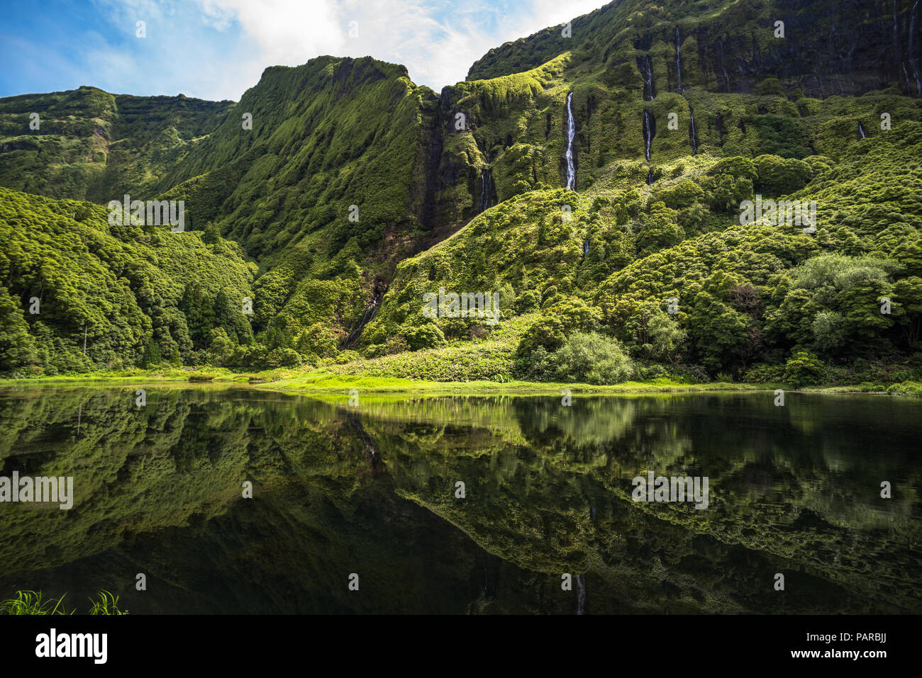 Poco da Ribeira do Ferreiro, l'île de Flores, Açores, Portugal. Photo Stock