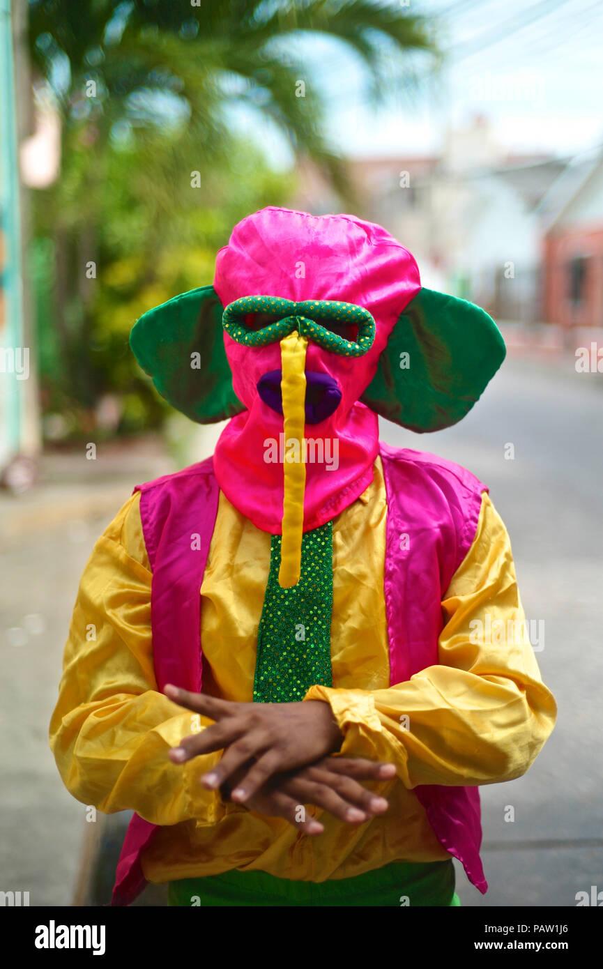 L'un des plus important et connu est la Marimonda, est originaire de Barranquilla, ce caractère est représenté par sa propre danse. L Banque D'Images