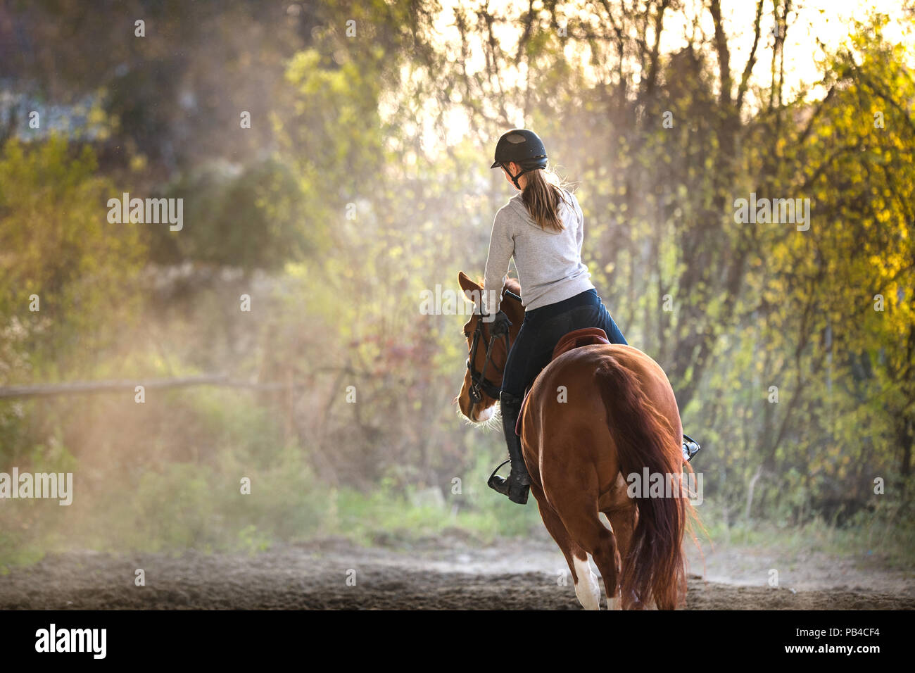 Young pretty girl riding a horse Photo Stock