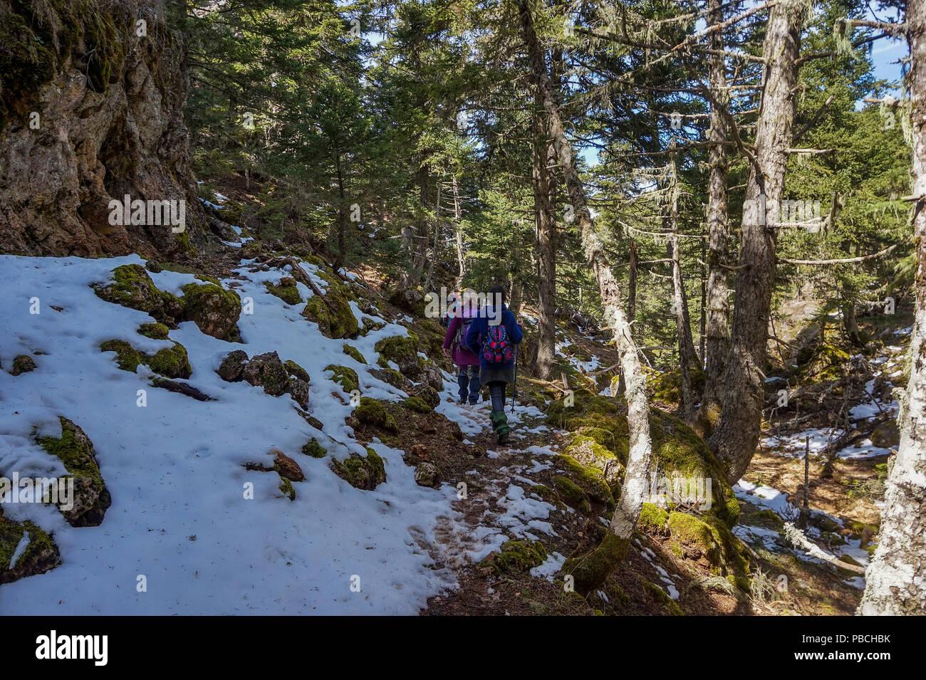 Les gens de la station de ski de randonnée de Aroania (également connu sous le nom de mont Helmos ou montagne Chelmos) en direction du grand monastère de la grotte située au-dessus de Zachlorou. Photo Stock