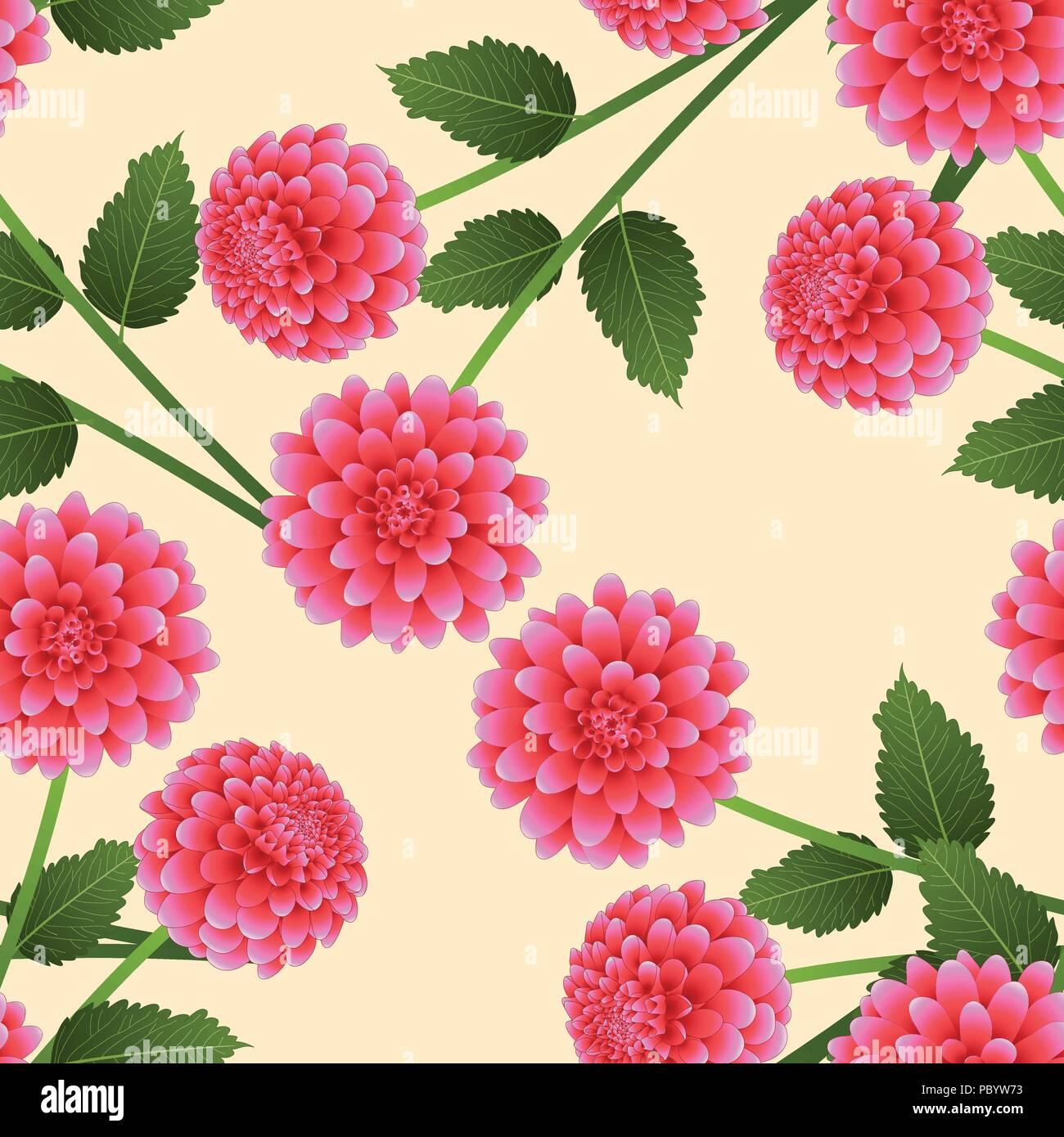 Dahlia Rose Sur Fond Ivoire Beige Fleur Nationale Du Mexique