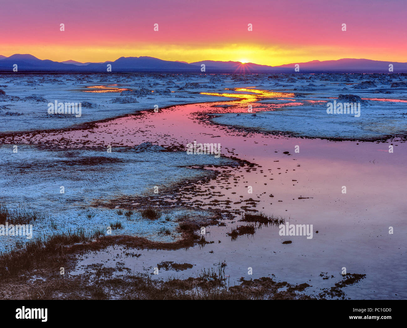 Le lever du soleil, le lac Mono, Mono Basin National Forest Scenic Area, Inyo National Forest, Californie Photo Stock