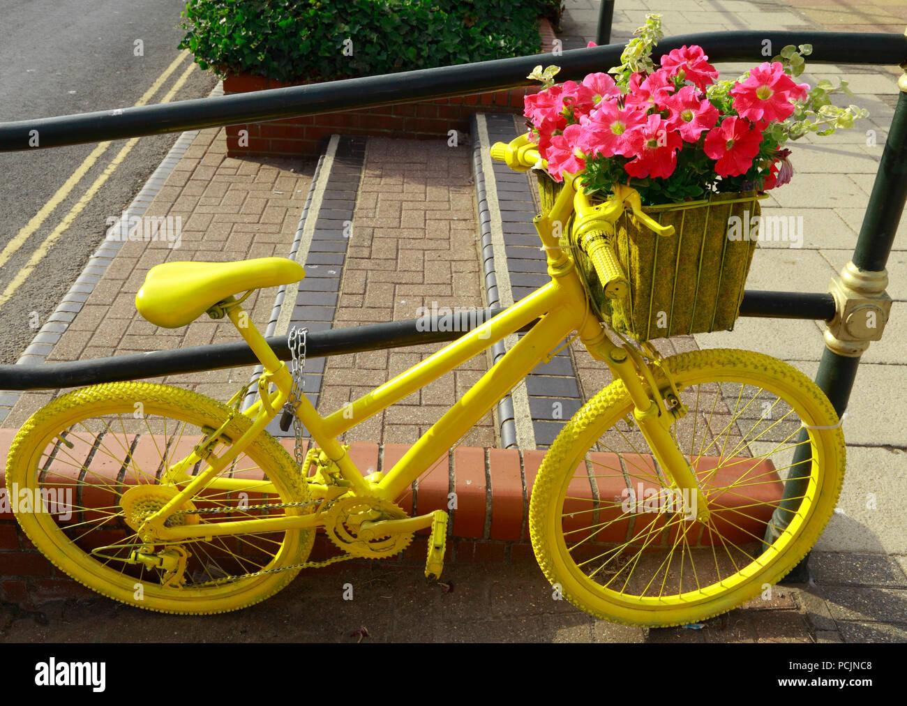 Hunstanton en fleurs, plantes inhabituelles, conteneurs de bicyclettes peints jaune Photo Stock