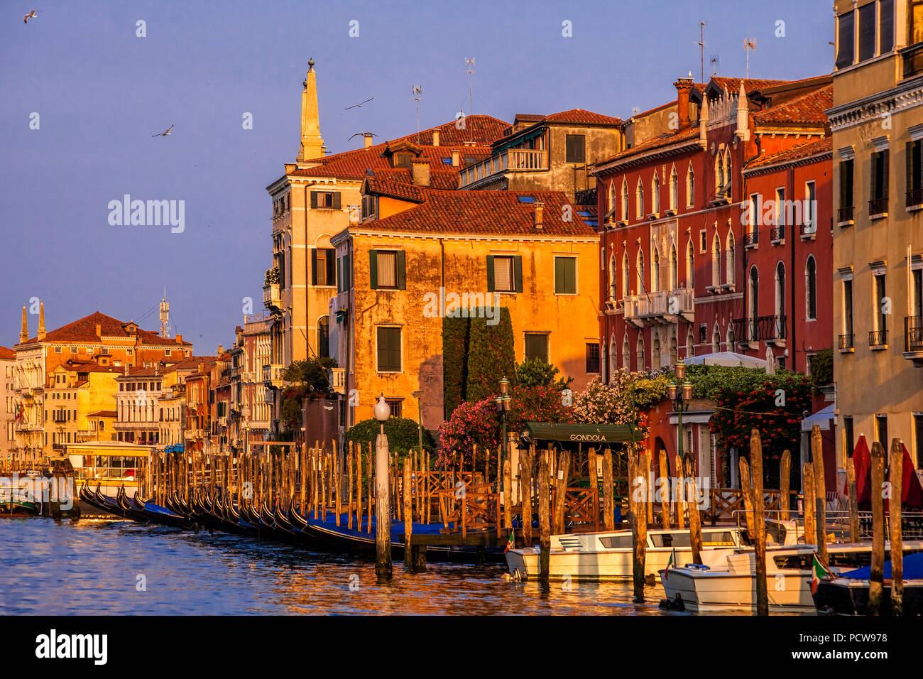 Gondoles garé sur le Grand Canal à Venise, Italie Photo Stock