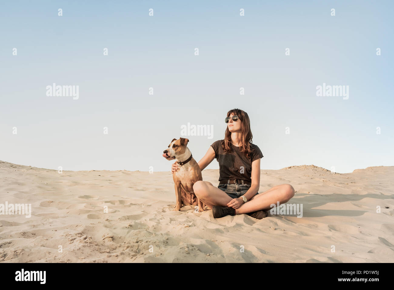 Belle jeune femme à lunettes de câlins avec chien assis sur la plage de sable fin ou sur le désert. Fille dans des vêtements de randonnée et Staffordshire terrier puppy stit Banque D'Images